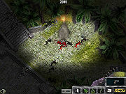 Play Foyle 2 - The Jungle game