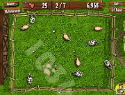 Play Eggsplosive game