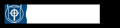 Gs_logo_alt_h_color_100