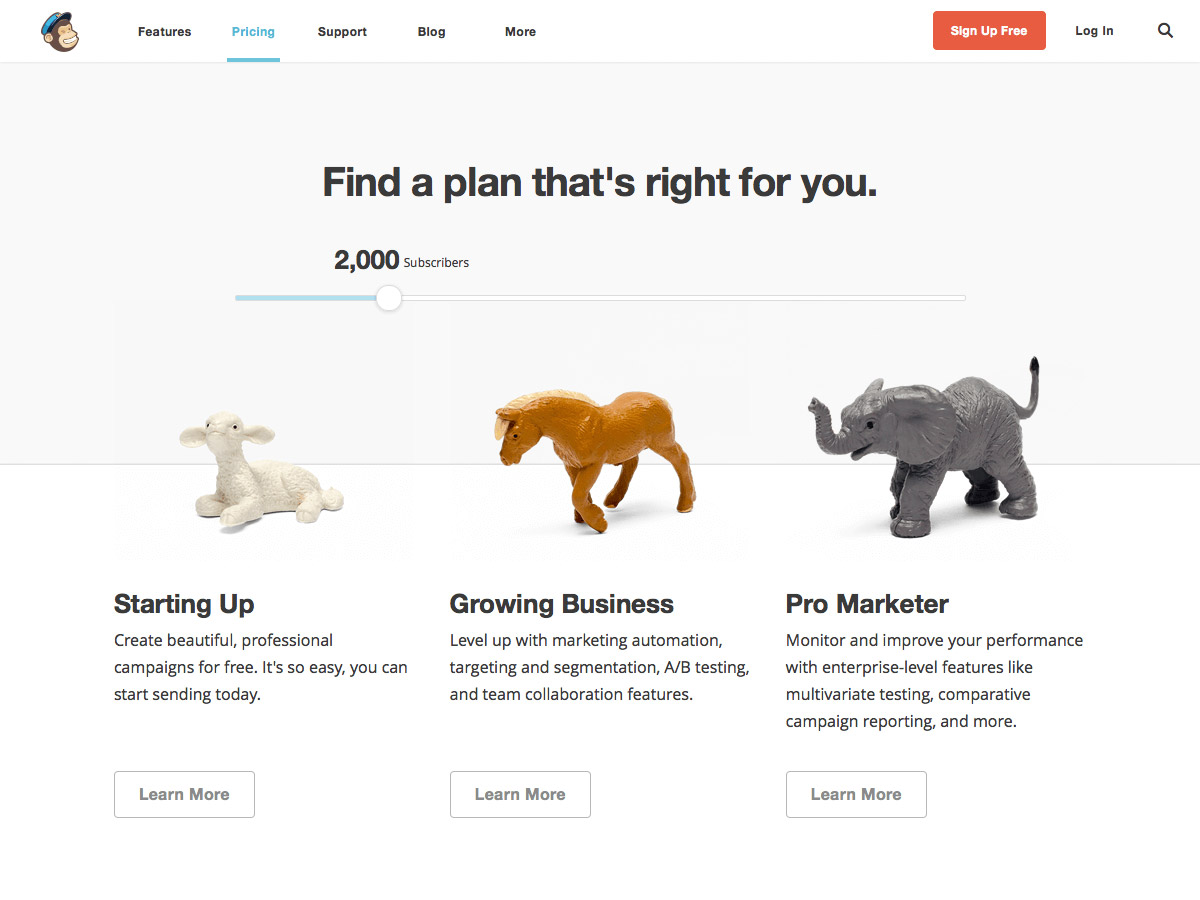 how to add mailchimp to website