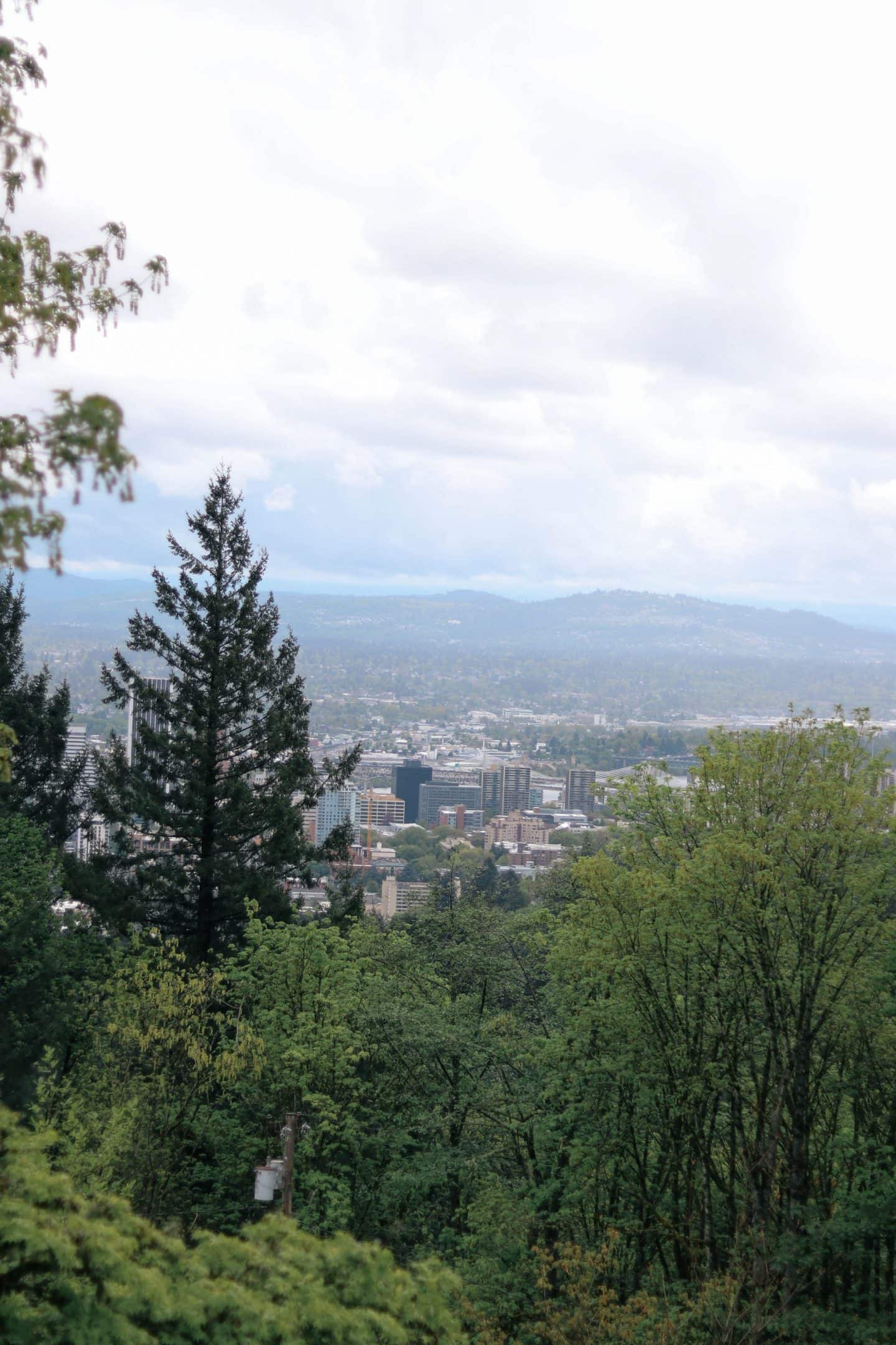 , 5 Things to do in Portland