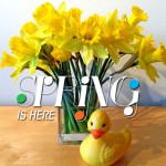 Spring duckie banner