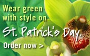 st. pat Day 1 - banner ad 177x110 pixels