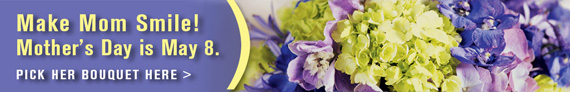 Mother's day Banner Ad - May 8, 2016 - 570x92