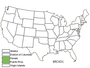 BRCA31.jpg