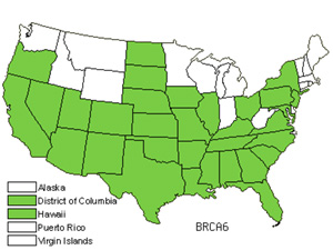 BRCA6.jpg