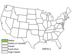 DRPA11.jpg