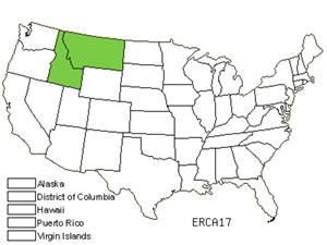 ERCA17.jpg