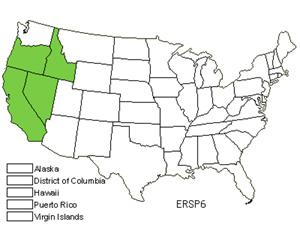 ERSP6.jpg