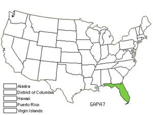 GAPA7.jpg