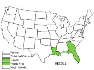 HECO11.jpg