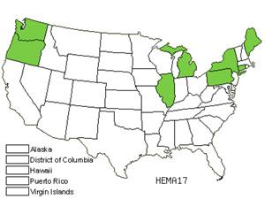 HEMA17.jpg