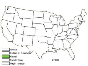 IPOB.jpg