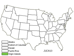 JUCA10.jpg