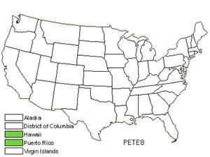 PETE8.jpg