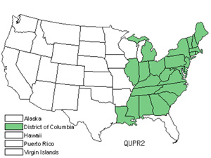 QUPR2.jpg