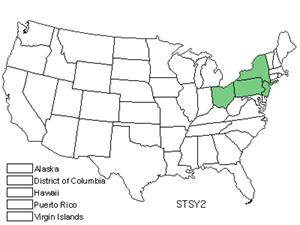 STSY2.jpg