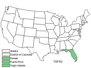 THFR2.jpg