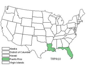 TRPA10.jpg