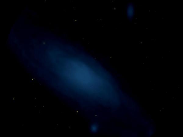 Bog Rosemary (Andromeda) https://www.sagebud.com/bog-rosemary-andromeda/