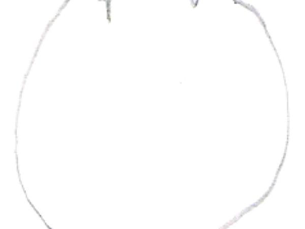 Madrone (Arbutus) https://www.sagebud.com/madrone-arbutus