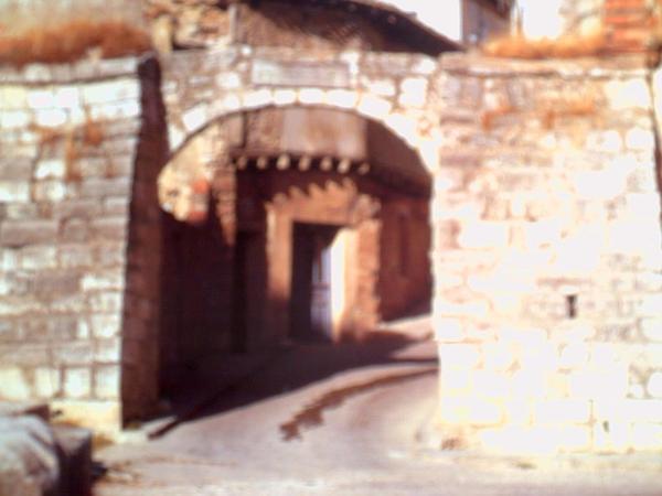 Castilla (Castilla) https://www.sagebud.com/castilla-castilla