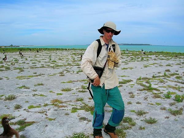 Prostrate Sandmat (Chamaesyce Prostrata) https://www.sagebud.com/prostrate-sandmat-chamaesyce-prostrata