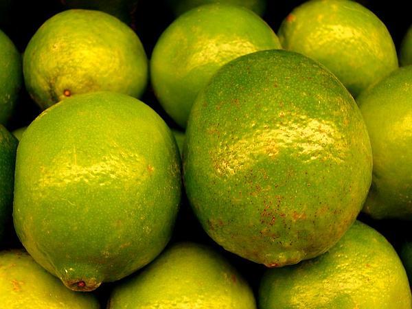 Key Lime (Citrus Aurantiifolia) https://www.sagebud.com/key-lime-citrus-aurantiifolia