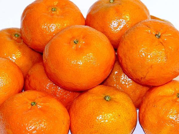 Tangerine (Citrus Reticulata) https://www.sagebud.com/tangerine-citrus-reticulata