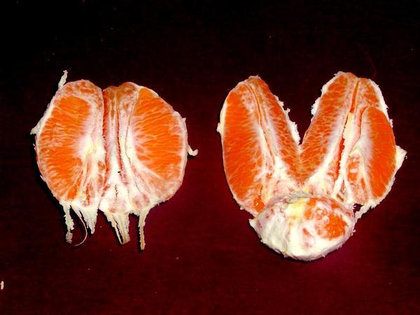 Sweet Orange (Citrus Sinensis) https://www.sagebud.com/sweet-orange-citrus-sinensis