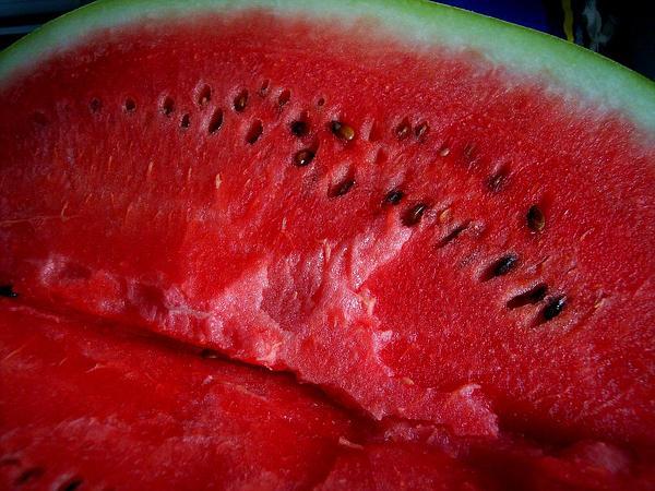 Watermelon (Citrullus) https://www.sagebud.com/watermelon-citrullus