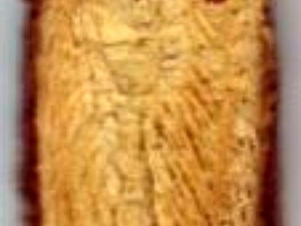 Cultivated Licorice (Glycyrrhiza Glabra) https://www.sagebud.com/cultivated-licorice-glycyrrhiza-glabra