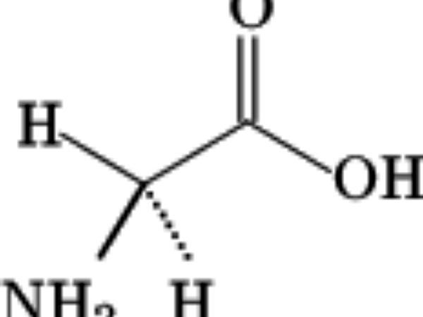Soybean (Glycine) https://www.sagebud.com/soybean-glycine