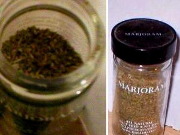 Sweet Marjoram (Origanum Majorana) https://www.sagebud.com/sweet-marjoram-origanum-majorana/