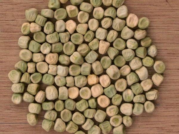 Garden Pea (Pisum Sativum) https://www.sagebud.com/garden-pea-pisum-sativum