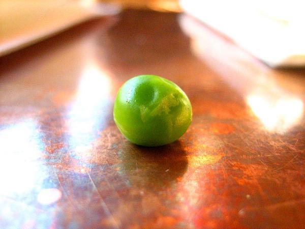 Pea (Pisum) https://www.sagebud.com/pea-pisum