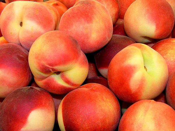 Peach (Prunus Persica) https://www.sagebud.com/peach-prunus-persica