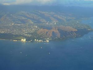 Diamond Head Schiedea