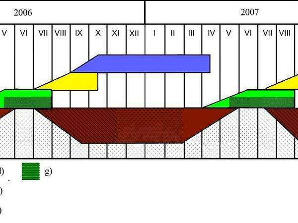 Giant Goldenrod (Solidago Gigantea) https://www.sagebud.com/giant-goldenrod-solidago-gigantea