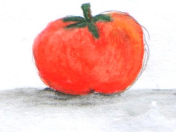 Nightshade (Solanum) https://www.sagebud.com/nightshade-solanum