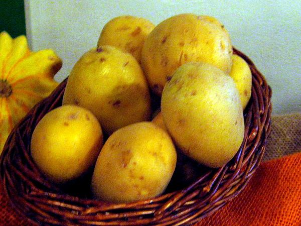 Irish Potato (Solanum Tuberosum) https://www.sagebud.com/irish-potato-solanum-tuberosum