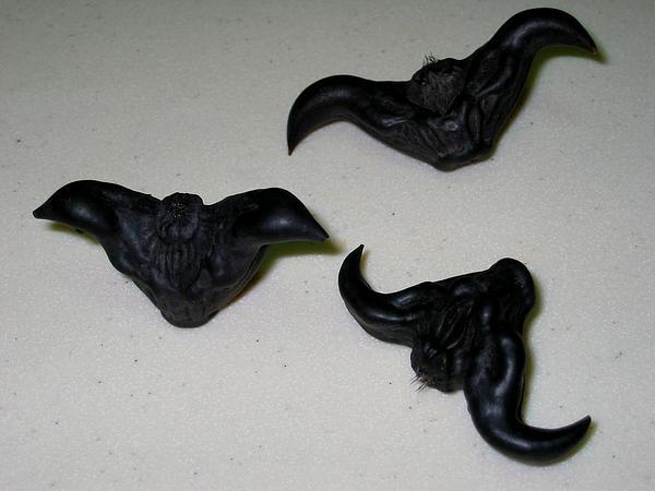 Water Chestnut (Trapa) https://www.sagebud.com/water-chestnut-trapa/