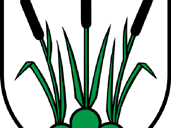 Cattail (Typha) https://www.sagebud.com/cattail-typha/