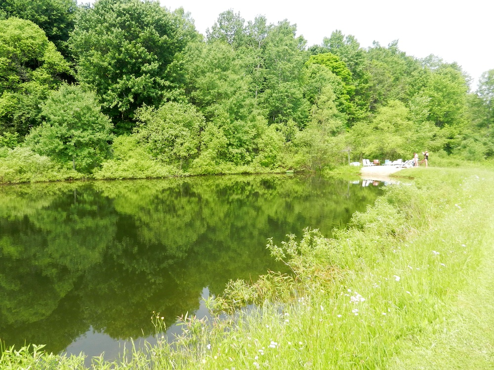 Pond with a maximum depth of 10 feet. Warm in the summer and loaded with catch-and-release fish.