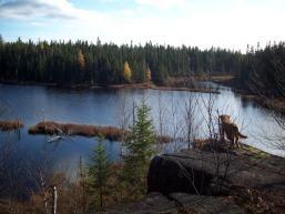 Sentier des marais saguenay  lac saint jean small