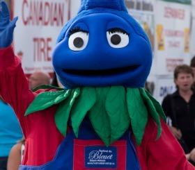 Festival du bleuet saguenay lac st jean small