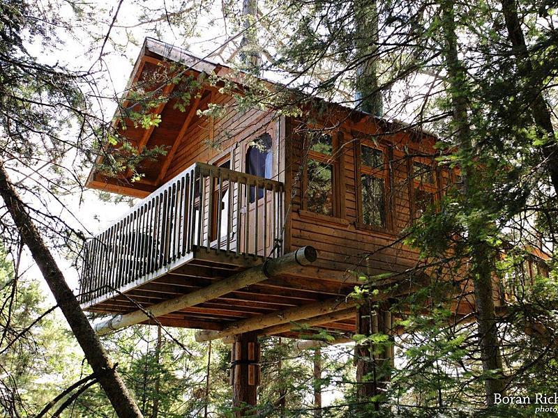 Maison dans les arbres 2 big