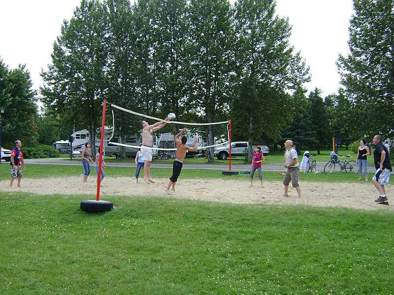 Volleyball big