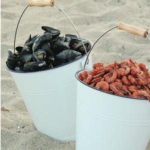 clams-and-shrimp