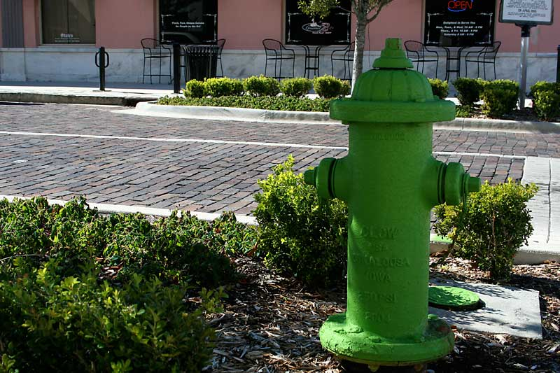 Day 139 – Sanford's Green Fire Hydrants